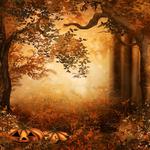 ������ jojo_autumn_forest_paper_22 (700x700, 638Kb)