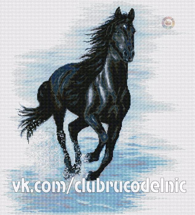 Черный конь (634x700, 697Kb)
