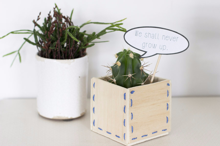 we-shall-never-grow-up-wooden-planter-diy (700x466, 207Kb)