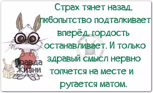 1411583807_frazki-3 (604x367, 203Kb)