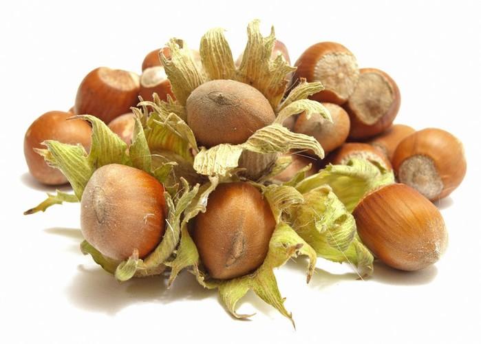 Фундук: полезный или вредный лесной орех?
