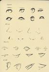 Превью рисуем лицо (407x604, 151Kb)