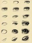 Превью рисуем глаза (445x604, 217Kb)