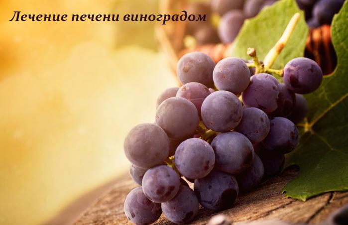 2749438_Lechenie_pecheni_vinogradom (700x452, 370Kb)