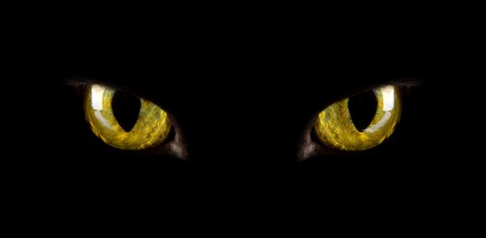 глаза (700x343, 57Kb)
