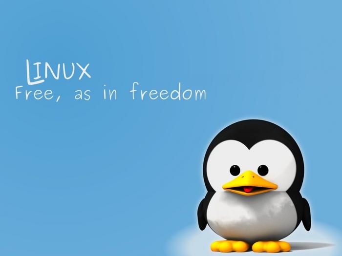 Мифы об ОС Linux: особенности для пользователей операционной системы