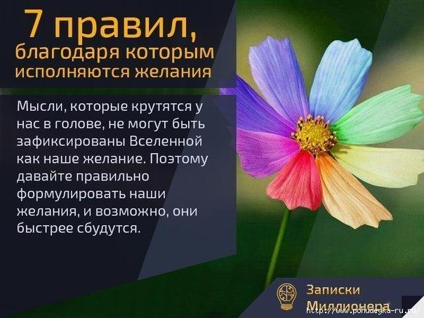 3925073_7YHNWjcm8Y0 (604x453, 143Kb)