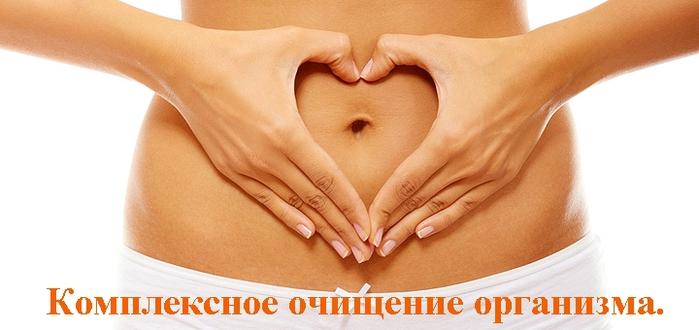 """alt=""""Первый этап очищения организма – это очищение кишечника""""/2835299__2_ (699x330, 150Kb)"""