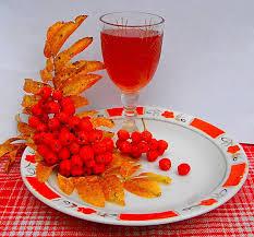 Ликер из красной рябины/3407372_nastoika_ryabini (233x217, 15Kb)