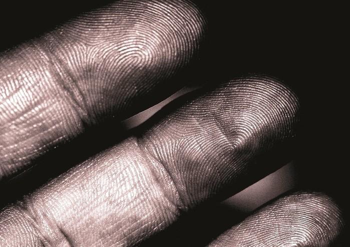 О чем расскажут узоры на пальцах и что такое дерматоглифика