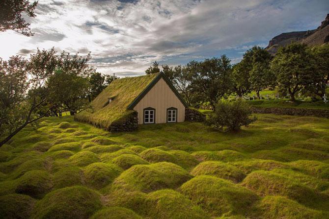 зеленые крыши в скандинавии фото 3 (670x447, 316Kb)