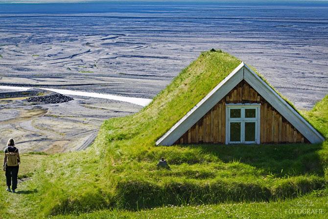 зеленые крыши в скандинавии фото 7 (670x447, 370Kb)