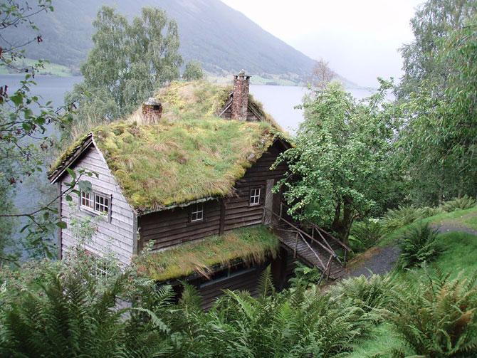 зеленые крыши в скандинавии фото 11 (670x503, 419Kb)