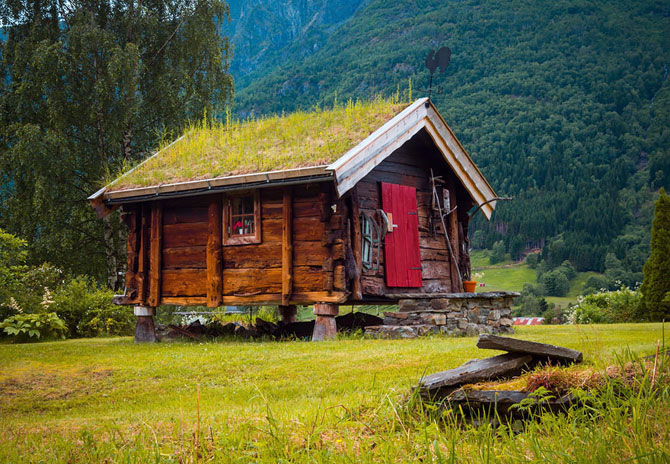зеленые крыши в скандинавии фото 14 (670x464, 424Kb)
