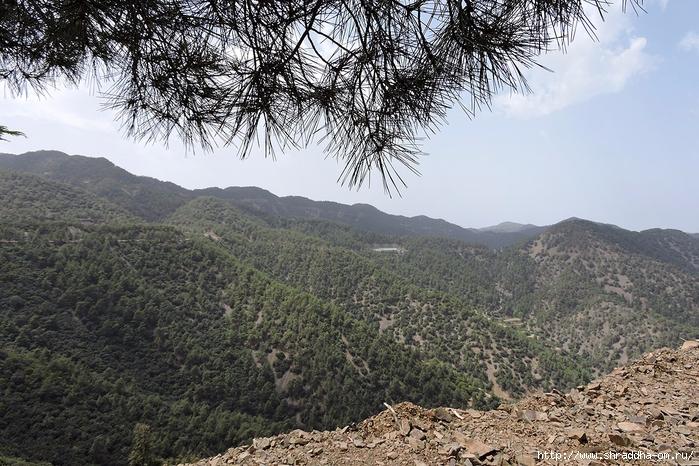 Кипр, май 2016 (273) (700x466, 362Kb)