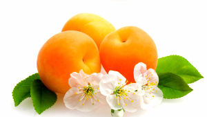fruits_flowers_apricots_leaves_80932_2048x1152 (300x169, 50Kb)