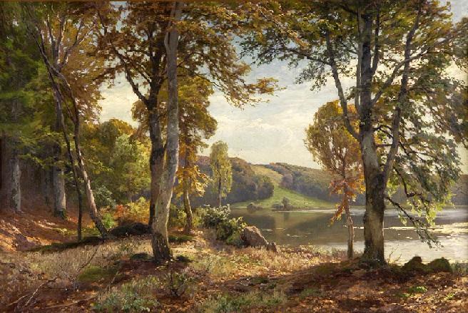 Лесной пейзаж с озером. (656x439, 483Kb)