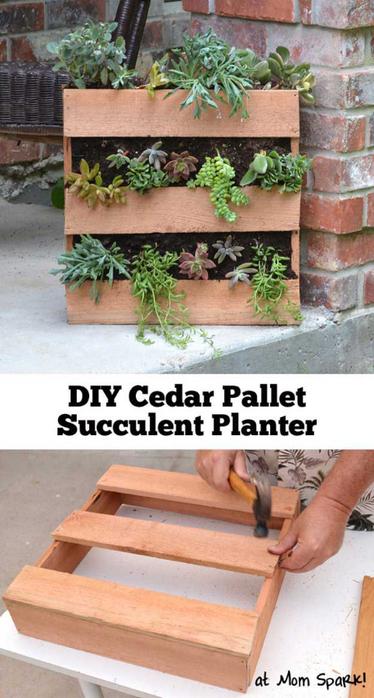 12-Creative-DIY-Pallet-Planter-Ideas-for-Spring-DIY-Cedar-Pallet-Succulent-Planter (374x700, 290Kb)