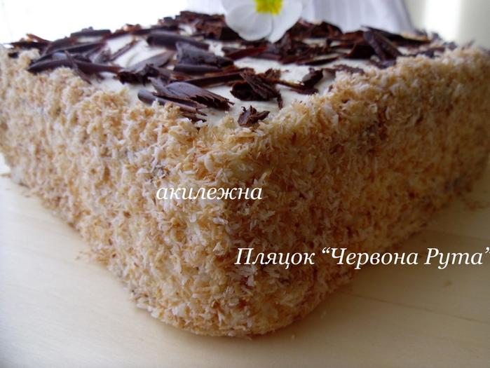 2835299_Plyacok_Chervona_Ryta_1_ (700x525, 196Kb)