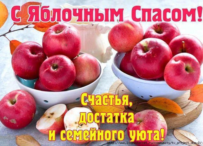 13671744_168657970230722_1284406453_n (700x503, 235Kb)