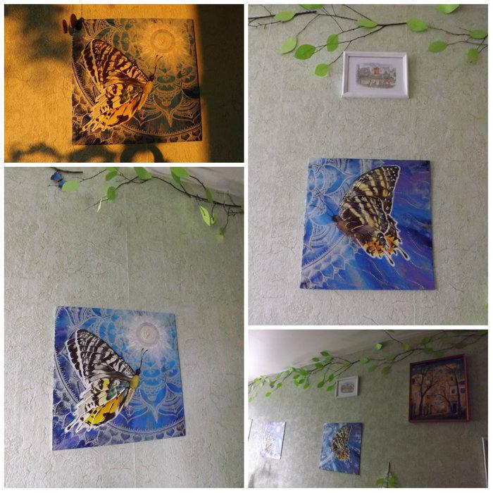 collage_бабочки (700x700, 127Kb)