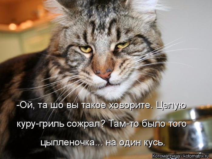 kotomatritsa_G (1) (700x524, 335Kb)