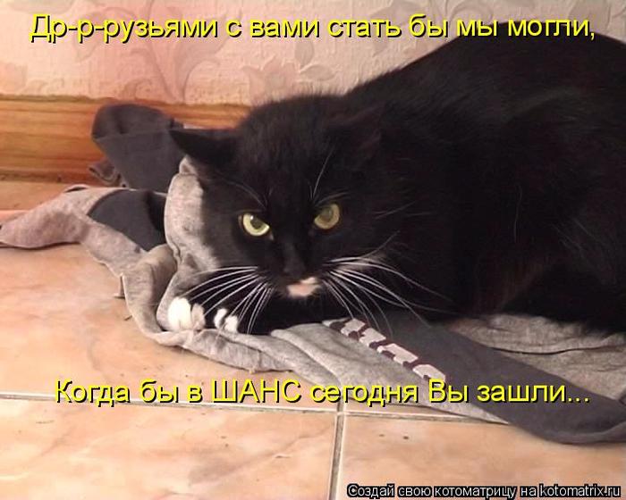 kotomatritsa_h (700x560, 358Kb)