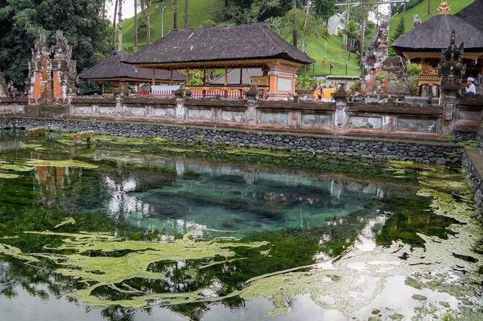 Bali-temple-pond-H (680x453, 459Kb)