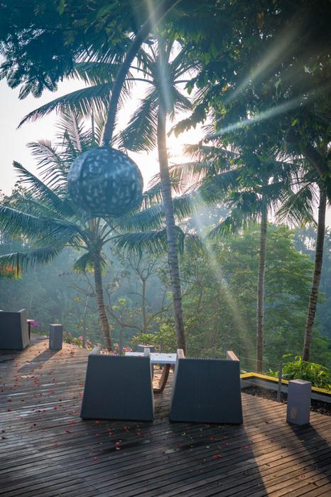 Bali-Ubud-Maya-sun-V (466x700, 459Kb)