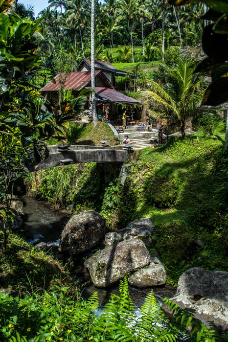 temple-bridge-V (466x700, 641Kb)