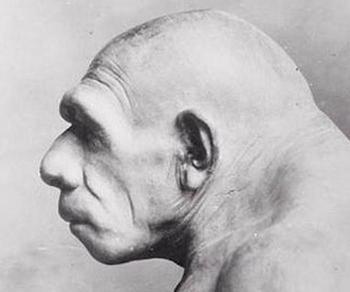 Куда исчезли неандертальцы