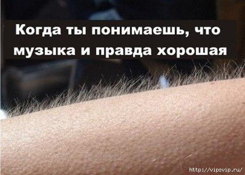 5745884_myrashki (500x358, 90Kb)