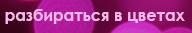 3579231_razbiratsya_v_cvetah (192x33, 22Kb)