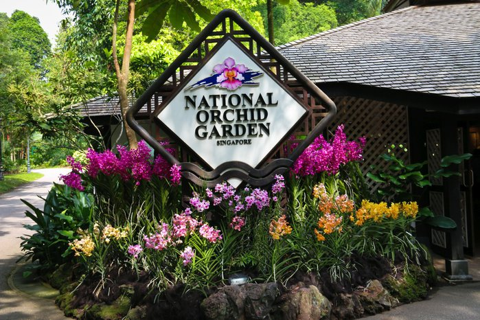 Singapore-National-Orchid-Garden23 (700x466, 124Kb)