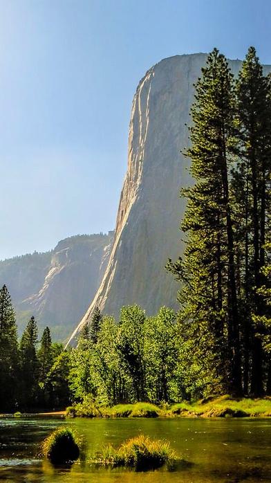 Yosemite National Park (492x8700, 328Kb)