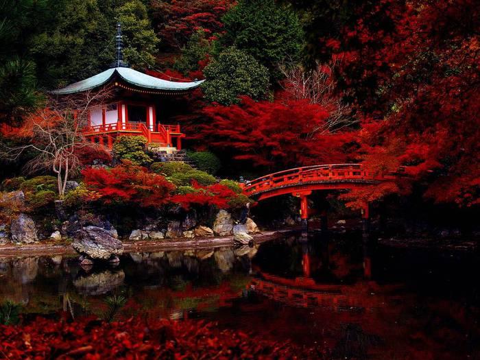 131149-places-to-see-before-you-die-kyoto-japan (700x525, 72Kb)