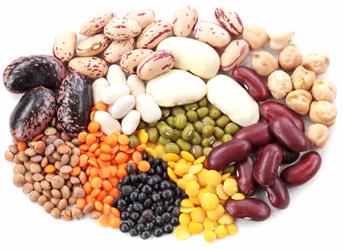 bean (343x250, 114Kb)