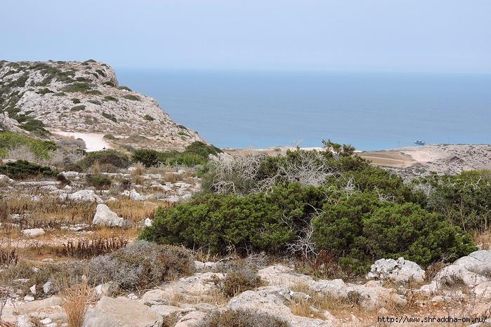 Кипр, май 2016 (290) (700x466, 335Kb)