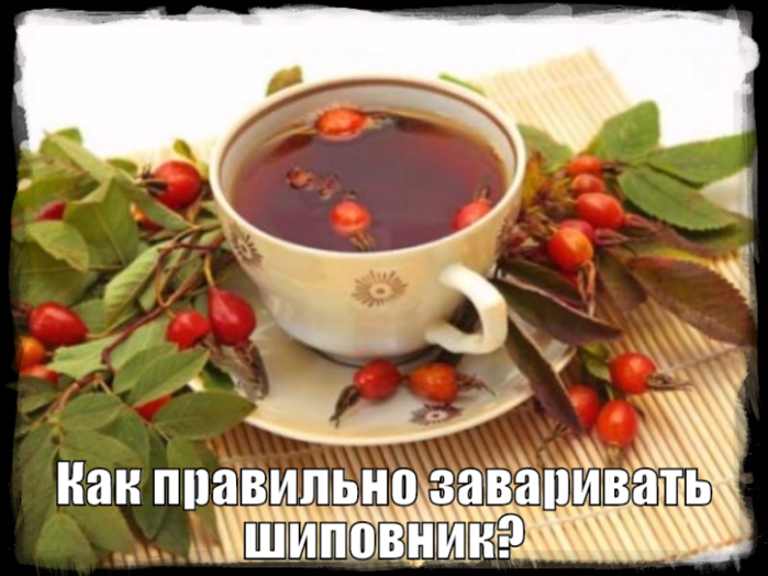 чай чанг шу в аптеках москвы