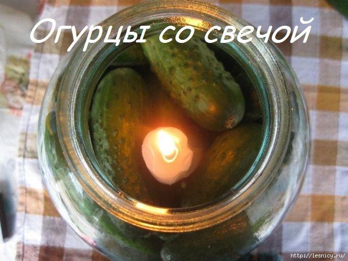 4027137_ogurcu_v_banke690x517 (690x517, 169Kb)