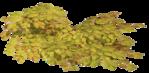 Превью 113el (700x342, 350Kb)