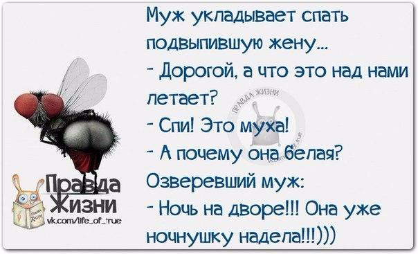 1412612293_frazki-15 (604x367, 181Kb)