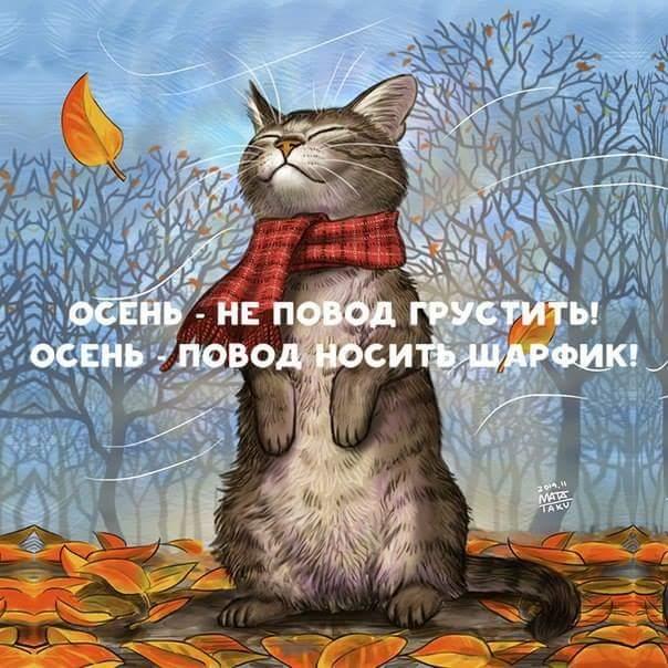 FB_IMG_1475355380810 (604x604, 67Kb)