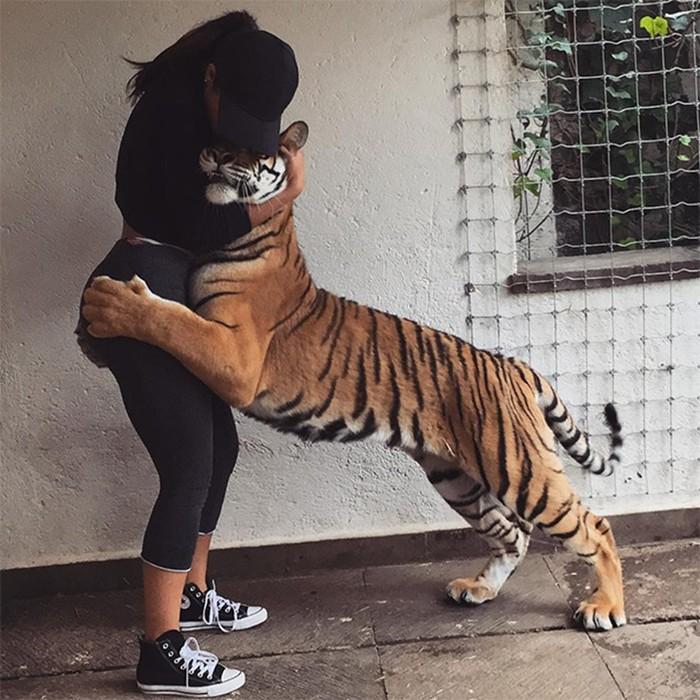 Р р р р. 10 самых популярных Instagram аккаунтов о животных
