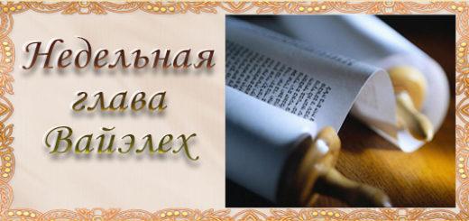 4638534_nedelnaya520x245_1_ (520x245, 49Kb)