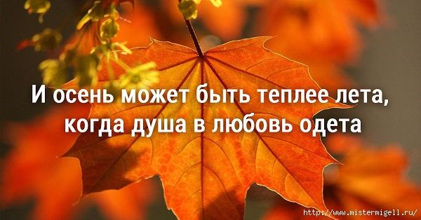 3085196_8_1_ (600x314, 137Kb)