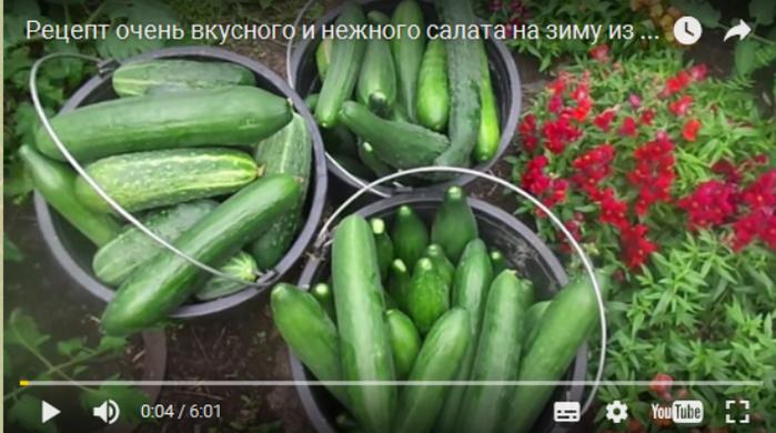 Салат нежный на зиму из огурцов