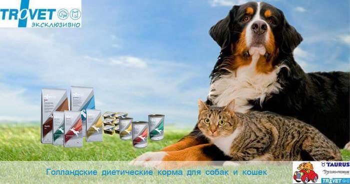FB_IMG_1475781023574 (700x369, 36Kb)