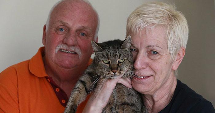самый старый кот в мире 2 (700x368, 159Kb)