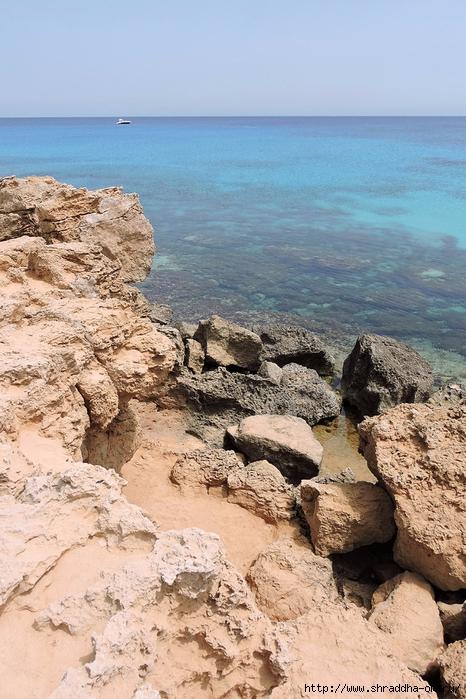 Кипр, май 2016 (318) (466x700, 313Kb)